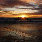 January Sunrise by nikki harrison