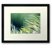 First Thought Framed Print