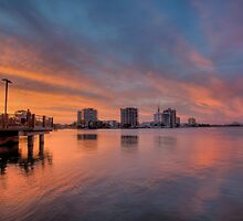 Cotton Tree Sunset-0697 by Barbara Harris