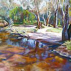 Creek Crossing, Avenel by Lynda Robinson