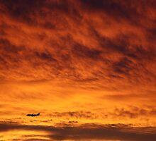 Sunset Plane by costafillis