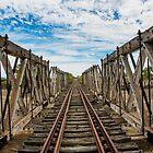 The Disused Rail Bridge by David Haworth