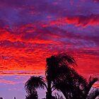 West Aussie Magic by Barry  Dux