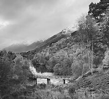Autumn Storms at Glen Affric by kernuak