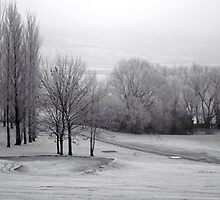 Frosty golf course by Victoria Kidgell