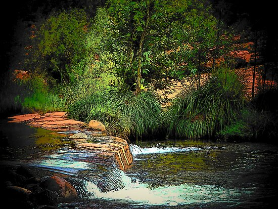 Red Rock Crossing, Sedona by Darlene Wilson