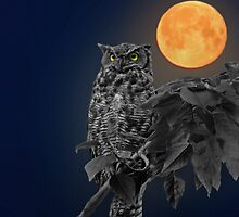 Night Watcher by Ron Day