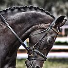 Dressage Mare by ~ Ademac