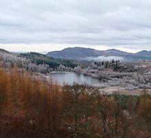 Hoar Frost attacks the Land by Braedene