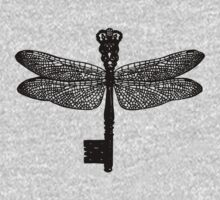 The Dragonfly Key by Aimee Stewart