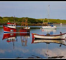 Boats on Strangford Lough by Shaun Whiteman