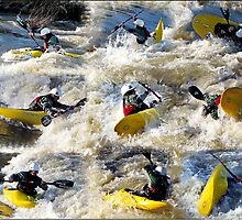 Kayak Mania  by Chuck Gardner