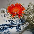 Daisy Dish by DIANE  FIFIELD