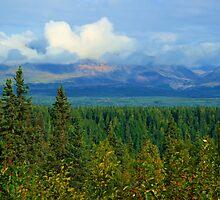 Lush Land by dmark3