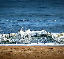 Wave At Me by Gayle Dolinger