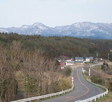 The road to Iwasaki by profusemoose