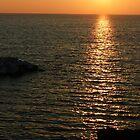 Cinque Terre by Luisa Muscara