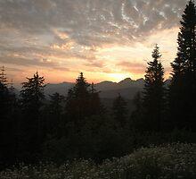 Majestic Sunset by Olga Zvereva
