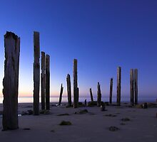 Silent Sentinels by Michael Buddle