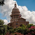 Texas State Capitol in Austin by James Gray