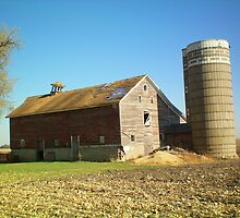 Lil country Barn! by Diane Trummer Sullivan