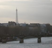 Paris by profusemoose