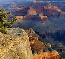 Mather Point Morning by Stephen Vecchiotti