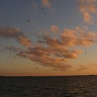 clouds on the horizon by sirfinepix27