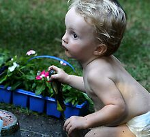 Little Gardener by Normf