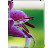transcendent desire iPad Case/Skin