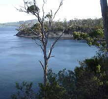 Eggs and Bacon Bay Southern Tasmania by Goggo