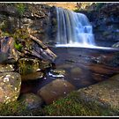 East Gill Waterfall by Shaun Whiteman