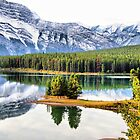 Two Jack Lake Wayside by Vickie Emms