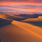 Dune Wonderland by Wojciech Dabrowski
