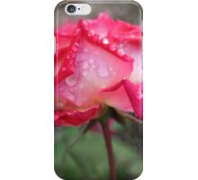 Pink rose with raindrops - 2011 iPhone Case/Skin