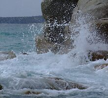 Splash by lesleyB