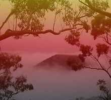 Tabletop Mountain, Toowoomba. Qld. Australia by Marilyn Baldey