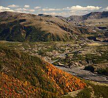 Mount St Helens Landscape by Olga Zvereva