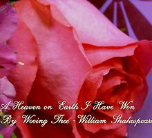 A Heaven I Have Won... by Rebecca Bryson