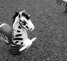 The Lonely Zebra by Daria Parsa