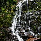 Nelson Falls by Igor Janicijevic