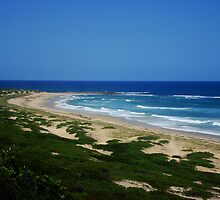 Wild & Rugged Australian Beach by Samantha  Goode