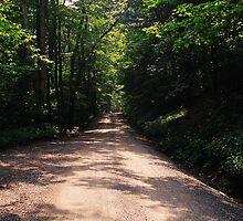 West Virginia Back Road by Allen Lucas