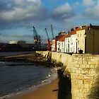 Hartlepool Headland. by Carl Young