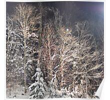 winter renaissance Poster