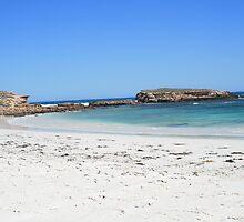 Scott's Bay, Eyre Peninsular. by elphonline
