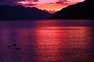 sunset on wakatipu by Steve Scully