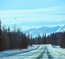 Road to Chena by Virginia Maguire
