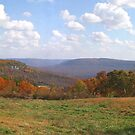 Autumn in the Ozarks by Lisa G. Putman