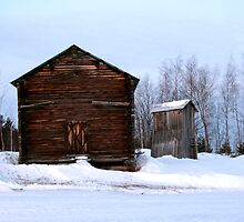 SERIES: Lapland Village #5 by The  Republic Of Media